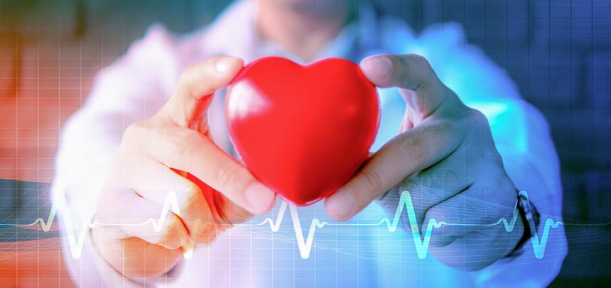 EKG-Zeile mit einem Mediziner, der ein Gummi-Herz in die Kamera hält