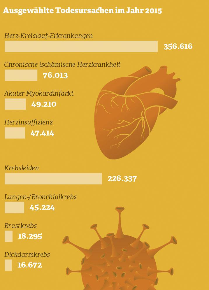 Ausgewählte Todesursachen im Jahr 2015