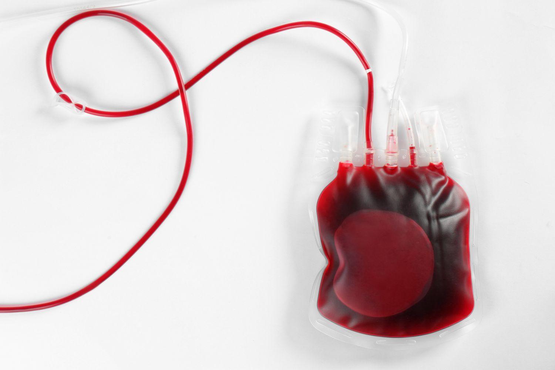 Transfusionsbeutel mit Blut vor weißem Hintergrund