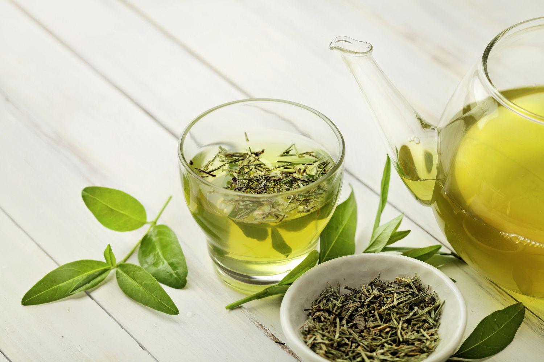 Teeglas mit grünem Tee und Blätter der Pflanze
