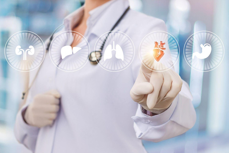 Mediziner:in steht vor verschiedenen Organ-Symbolen und tippt das Herz-Symbol an.