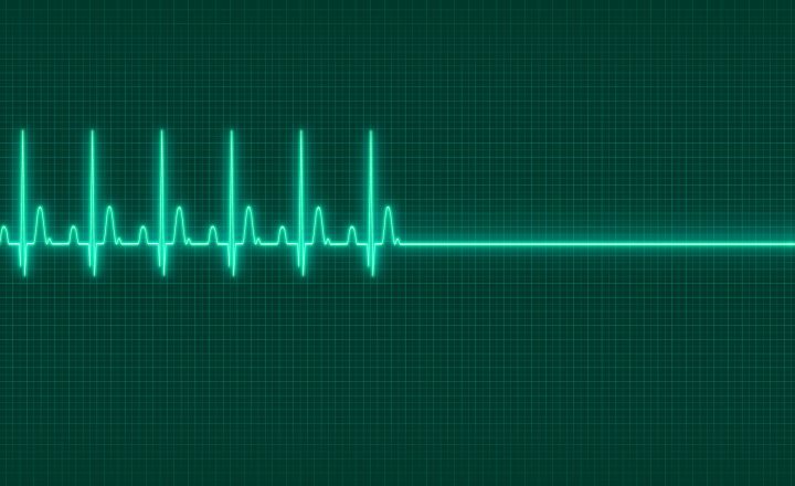 Gesundes Herz Wenn Das Blut Die Orientierung Verliert